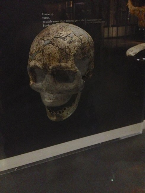 VoldemortSkull